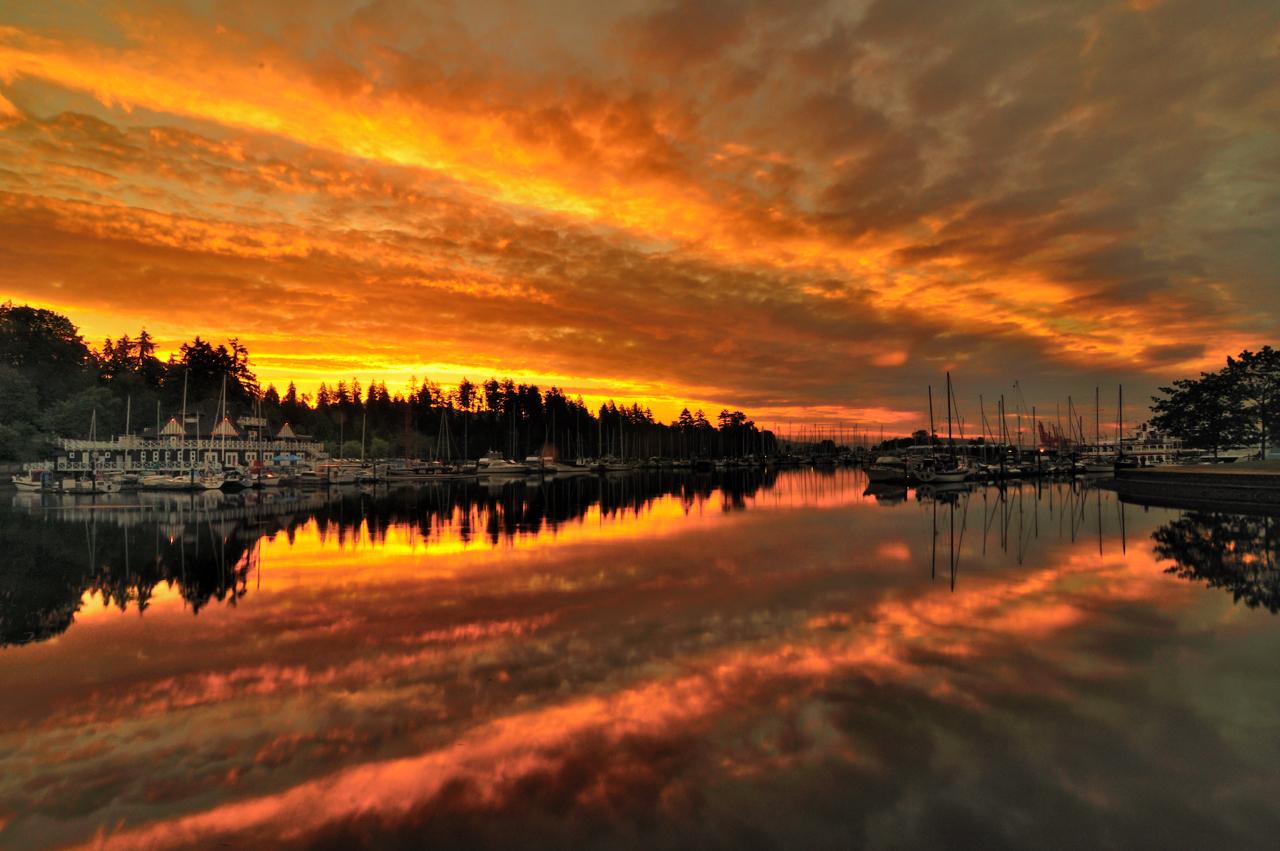 Coal Harbour Colourful Sunrise